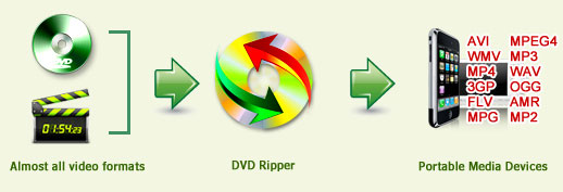 برنامج سريع لتحويل الفيديو intro_dvdripper.jpg